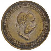 1883. I. Ferenc József / Szeged újjáépítésére ezüstözött Br emlékérem. SZEGED SZEBB LESZ MINT VOLT 1879 MÁRCZIUS 17-ÉN - I. FERENCZ JÓZSEF / PHÖNIXKÉNT ÚJJÁ SZÜLETETT MDCCCLXXIII (16,15g/38mm) T:2,2- kis ph. / Hungary 1883. Franz Joseph I / Reconstruction of Szeged silver plated Br commemorative medallion (16,15g/38mm) C:XF,VF slight edge error