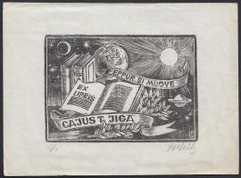 Helfried Weiß (1911-2007)  Ex libris. Fametszet. Jelzett / bookplate, wood-engraving. Signed. 16x12 cm