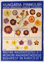 1935 Hungária primulák magyar virágok plakátja. 21x28 cm