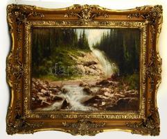 Neogrády László (1896-1962): Vízesés. olaj, vászon, kisebb festék lepattanással, antik keretben, 60×80 cm