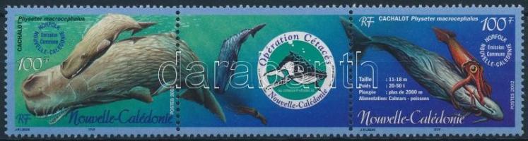 2002 Kampány a bálnákért sor hármascsíkban Mi 803-804