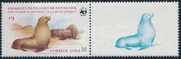Nature Conservation stamp with coupon, Természetvédelem szelvényes bélyeg