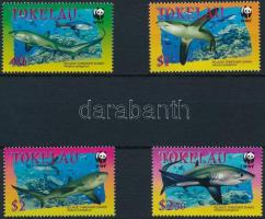 WWF: cápák sor WWF: Sharks set
