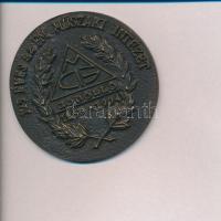 1994. 125 éves az FM Műszaki Intézet - Gödöllő 1869-1994 Br plakett (68mm) T:2