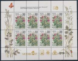 1995 Virágok kisív Mi 435-439 (olimpiai felülnyomással)