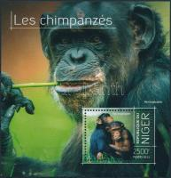2013 Csimpánz blokk Mi 256
