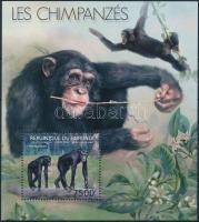 Chimpanzee block, Csimpánz blokk