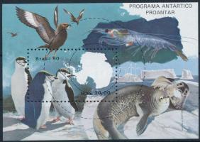 Antarctic exploration block + block FDC, Antarktisz-kutatás blokk + blokk FDC-n
