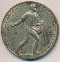 Berán Lajos (1882-1943) ~1920. Az érdem elismeréséül - A ,,Falu Országos Szövetség jelzetlen ezüstözött Br emlékérem (45mm) T:2,2-