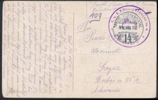 1916 Tábori posta képeslap K.u.k. PIONIERBATAILLON No.4. / 3. KOMPAGNIE + TP 14