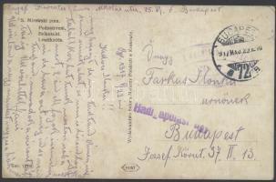 1917 Tábori posta képeslap Hadi ápolási ügy + BUDAPEST 72
