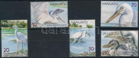 Zátonykócsag sor, Western Reef Heron set