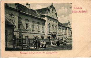Nagykálló, Magyar királyi állami elmegyógyintézet (vágott / cut)