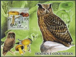 Mushrooms, owl block, Gomba, bagoly blokk