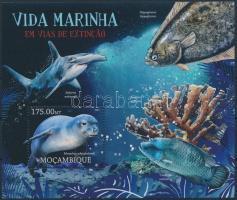 2012 Ritka tengeri állatok blokk Mi 637