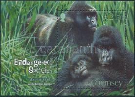 2007 Gorilla blokk Mi 45