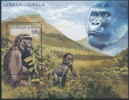 2001 Gorilla blokk