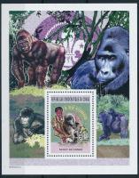 Gorilla block, Gorilla blokk