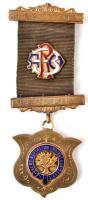 Nagy-Britannia DN Királyi Aggastyán Bölények Rendje - Charnwood Forest aranyozott, zománcozott, számozott Br szabadkőművességet imitáló szervezet jelvénye szalaggal T:2 Great Britian ND Royal Antediluvian Order of Buffalos - Charnwood Forest enamelled, numbered Br imitation of Freemasonry organisations badge C:XF