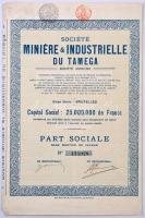 Belgium / Brüsszel 1923. Tamegai Bányász és Ipari Részvénytársaság névérték nélküli részvénye, felülbélyegzésekkel, szelvényekkel T:II-  Belgium / Brussels 1923. Miniére & Industrielle du Tamega share par value, with stamps and coupons C:VF