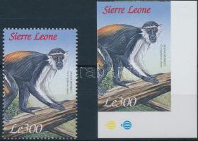 Monkey perf and imperf stamp, Majom vágott és fogazott bélyeg