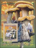 Albert Schweitzer, mushroom block, Albert Schweitzer, gomba blokk