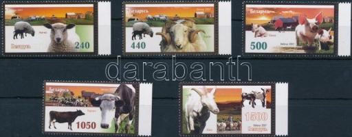 Animals margin set, Háziállatok ívszéli sor