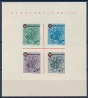 Rheinland-Pfalz 1949 Vöröskereszt blokk Mi 1