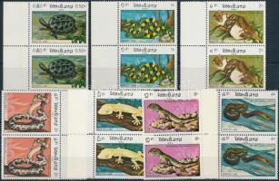 Hüllők sor ívszéli párokban, Reptiles set margin pairs