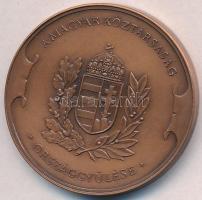 Bozó Gyula (1913-2004) DN. Magyar Köztársaság Országgyűlése Br emlékérem, műanyag tokban (42,5mm) T:1