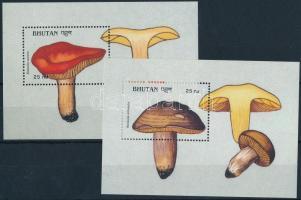 Mushrooms 2 diff blocks, Gomba 2 klf blokk