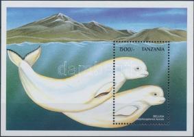 Delfin blokk, Dolphin block