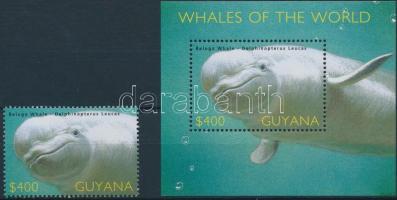Dolphin block + stamp from block, Delfin blokk + blokkból kitépett bélyeg