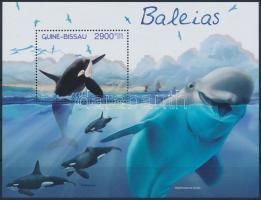 Orca block, Kardszárnyú delfin blokk