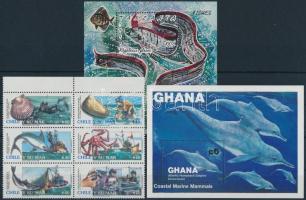 1970-1991 Marine animals 3 diff sets + 3 diff blocks, 1970-1991 Tengeri állatok motívum 3 klf sor + 3 klf blokk