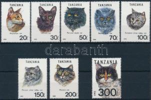 Cat set and stamp from block, Macska sor és blokkból kitépett bélyeg