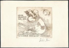 László Anna (1946-): Ex libris Herbert Schwarz. Rézkarc, papír, jelzett, 6x7 cm