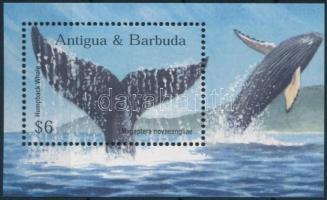 Bálna blokk, Whales block