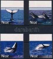 Bálna ívszéli sor Whale margin set