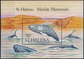 Whales block, Bálnák blokk