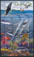Sea animals, Tengeri állatok