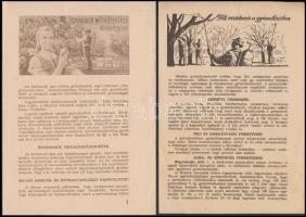 1955 Mezőgazdasági munkákkal kapcsolatos ismeretterjesztő füzetek(bordóilé készítés, mészkélné, őszibarack műtrágyázása, téli védekezés a gyümölcsöben)