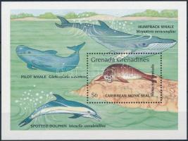 Marine animals block, Tengeri állatok blokk