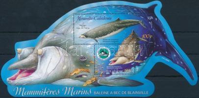 Campaign to protect marine mammals block, Tengeri emlősök védelme kampány blokk