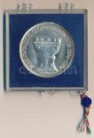 1984. MÉE Gyöngyösi Csoport - Gyöngyös 1334-1984 jelzett Ag emlékérem (0.640), plombált műanyag tokban T:1 patina