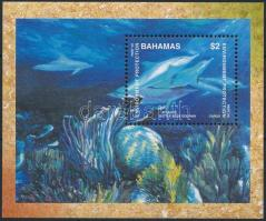 Dolphin; Environment block, Delfin; Környezetvédelem blokk