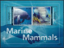Tengeri élővilág blokk Marine mammals block
