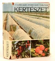 dr. Cselőtei László, dr. Csider László, Csáky Antal: Kertészet. Budapest, 1978, Mezőgazdasági Kiadó. Kiadói egészvászon kötés, kiadói szakadozott papírborítóban. Jó állapotban.