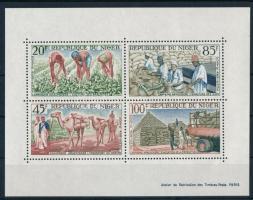 1963 Földimogyoró termesztés blokk Mi 1
