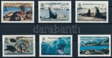 Elefántfóka sor Elephant Seal set